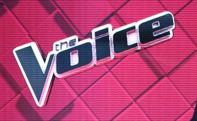 TheVoice logo