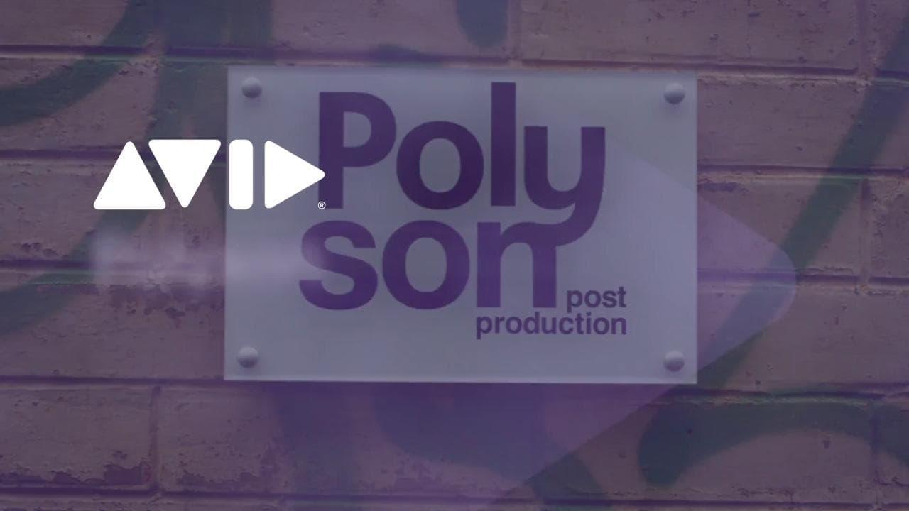 Polyson_Popoup