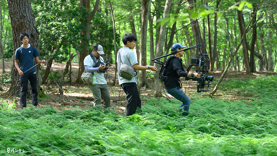shooting three trees from kansai tv