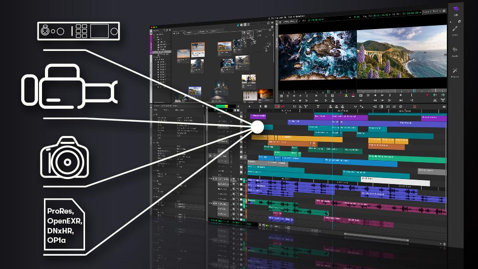 Avid announces free version of media composer | cinema5d.