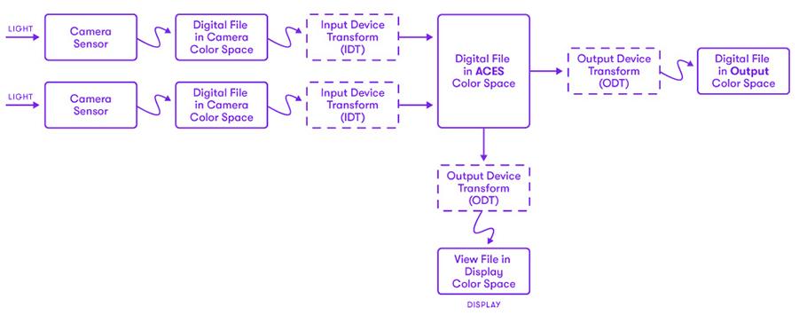 Diagram of ACES workflow