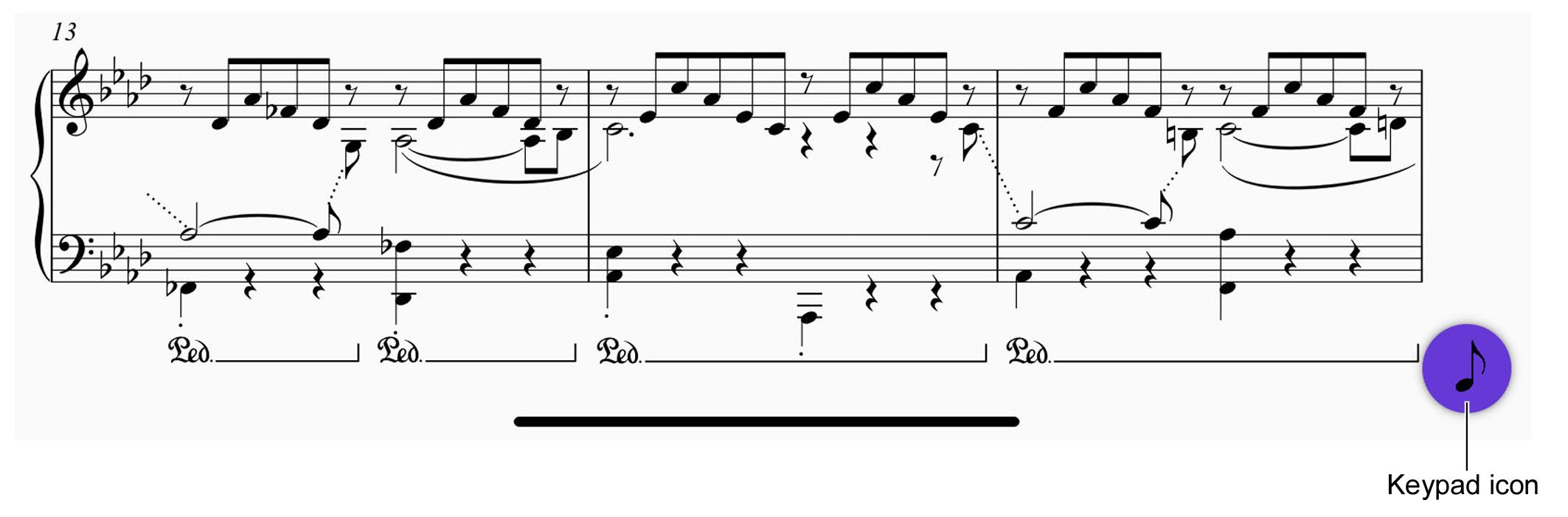 Zappa blog 8
